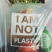 Green Products: How to set up Compostable Plastic bags business?