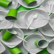 Business opportunity:  Eco-friendly tableware from Bagasse